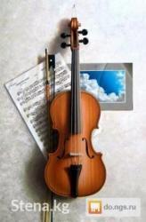 holodilnik i kondicionerov в Кыргызстан: Даю частные уроки игры на скрипке.Обучаю как с нуля так и после длител