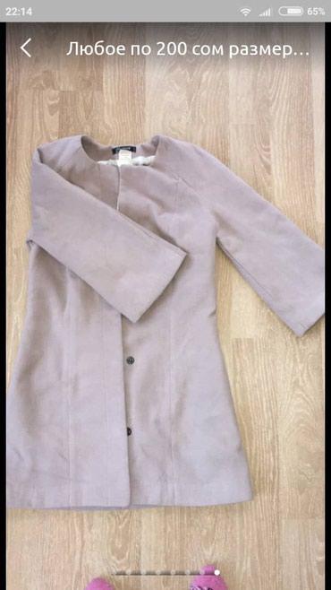 Деми пальто 42 размер с ремешком в в Бишкек