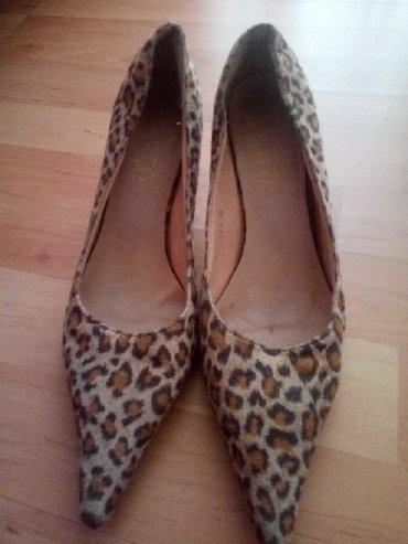 Broj maju - Srbija: Cipele malo nosene br 36