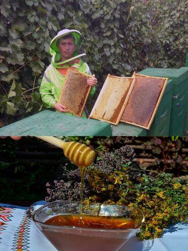 Предлагается горный мед прополис и сотовый мед собранный в