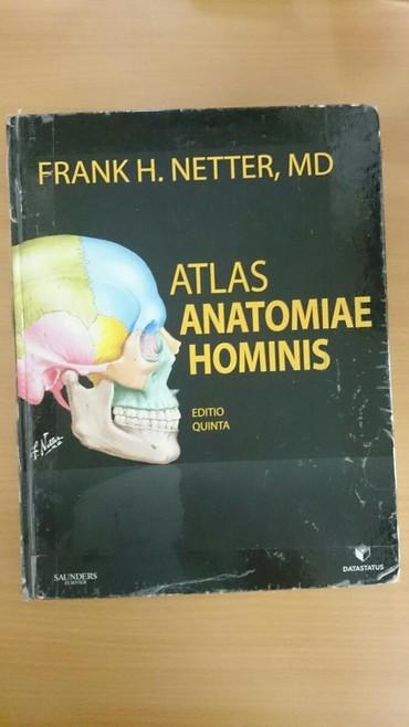 Atlas Netter za anatomiju Peto izdanje Korišćen je za jednu godinu - Belgrade