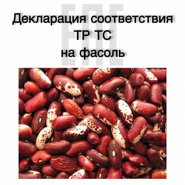 Услуги - Чаек: СЕРТИФИКАЦИЯ ФАСОЛИОформив разрешительный документ, а