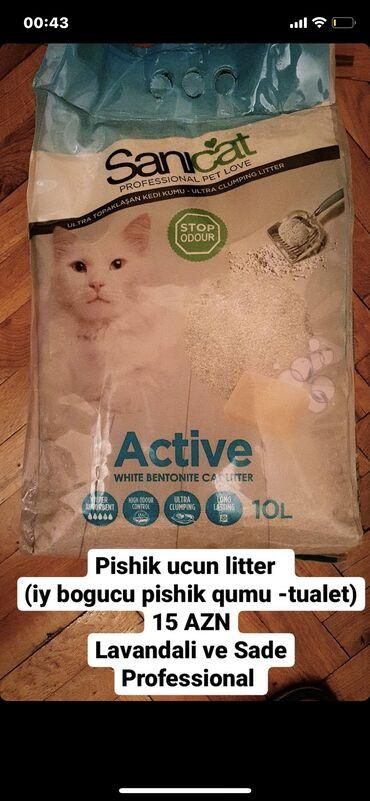 pishik - Azərbaycan: Pisik pishik qum u Sanicat Kitty friend 10 litirlik pishik qumlari
