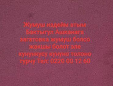 Работа - Ат-Башы: Жумуш издейм атым Бактыгул Бишкектен Ашканага загатовка жумуш болсо