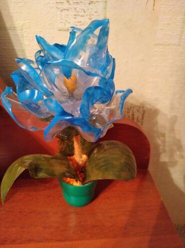 цветы для домашнего декора в Кыргызстан: Продаю цветок из пластика ручной работы. Отличный подарок для друзей и