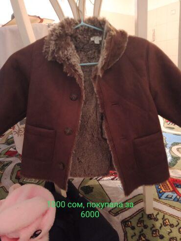 Личные вещи - Пригородное: Пальто