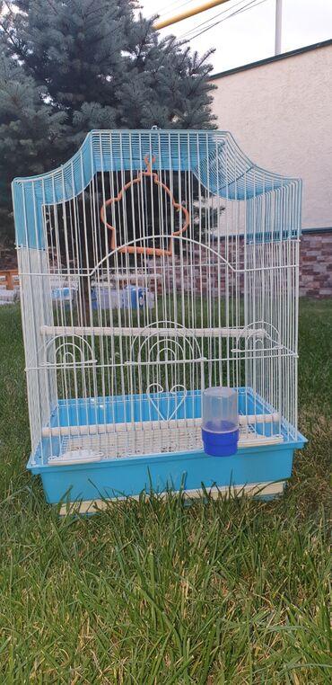 Клетка для птиц! 1000 сом