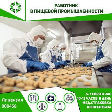 технолог пищевой промышленности бишкек in Кыргызстан   ТЕХНОЛОГИ: 458   Чехия. Строительство и производство. 3/1