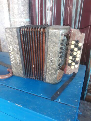 Гармошки - Кыргызстан: Продаю гармошку