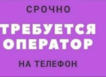 ups b u в Кыргызстан: В г.Каракол нужны операторы диспетчеры на телефон