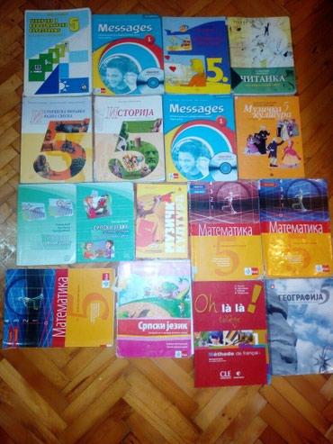 Prodajem knjige za 5 razred osnovne škole. Knjige su izuzetno - Belgrade