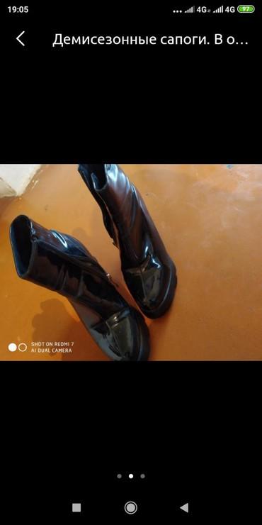 сапоги высокого качества в Кыргызстан: Женские сапоги 36