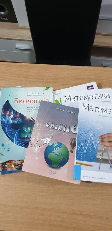 Knjige, časopisi, CD i DVD | Batajnica: Ocuvane knjige za sesti razred osnovne skole bez ostecenja