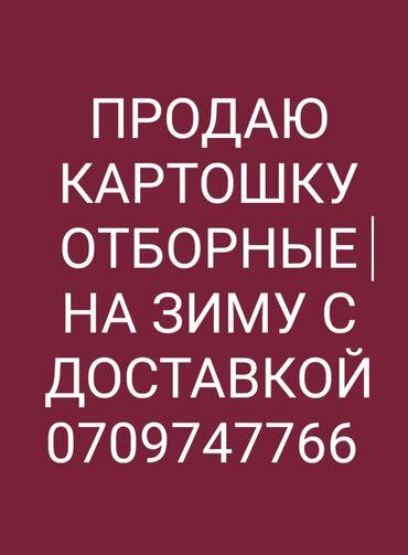 Услуги - Ананьево: Курьерская доставка