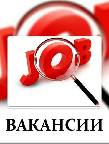 подработка в бишкеке для студентов in Кыргызстан | ОФИЦИАНТЫ: Подработка для студентов