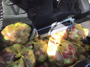 16 объявлений: Продаю рашида яблоки ыссыккульский в бишкеке 24-25 сентября