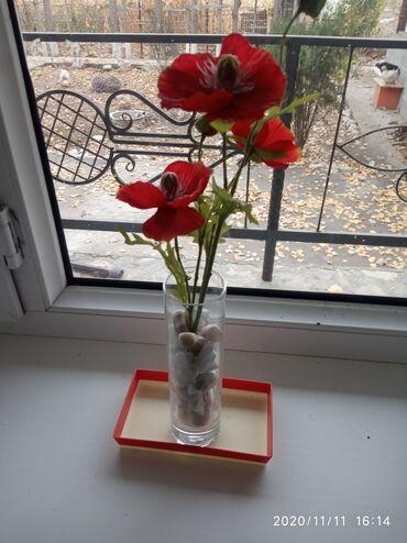 сетка мак в бишкеке в Кыргызстан: Искусственные маки с вазой 200 сом в Жалалабаде