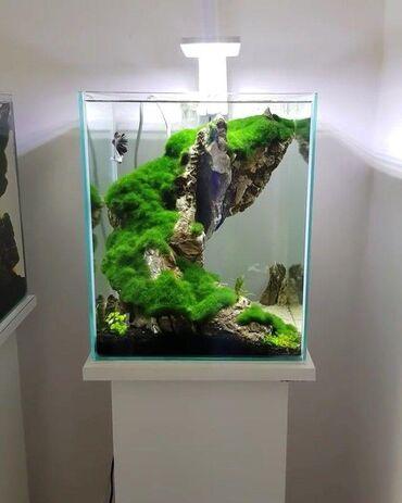 Искусственный камень для рыб