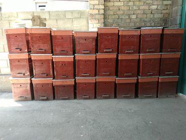 Ящики для пчёл по вопросам звоните