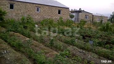 - Azərbaycan: Uctepede ferma satilir.qiymet razilasma yolu ile.24 sotdur yuz bas