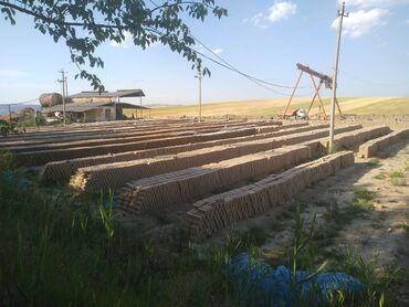 Работа - Ноокат: Работа кыш завод Ноокат
