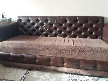 цветы напрямую без посредников в Кыргызстан: Продам диван в хорошем состоянии. Цвет коричневый