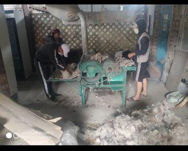 работа в бишкеке с ежедневной зарплатой в Кыргызстан: Срочно требуется рабочий на расчес шерсти парни без вредных привычек м