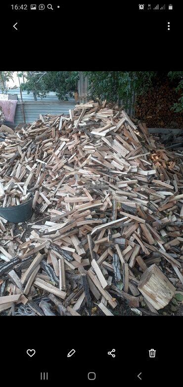 63 объявлений: Продаю дрова сухии большой мешок 350 сом
