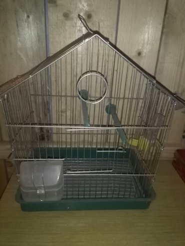 Kavez za ptice - Prijepolje