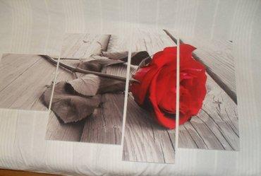 Kućni dekor - Novi Sad: Slike za zid iz delova ili cele,format 70x90cm,cena cele slikemože p