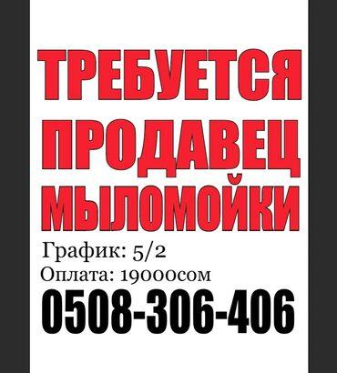 продавец мороженого бишкек в Кыргызстан: Продавец-консультант. С опытом