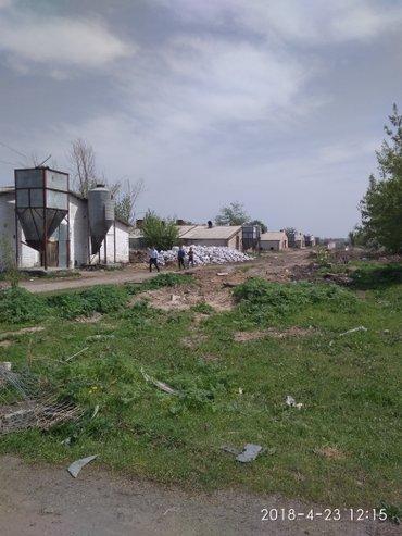 Продам в селе Манас  в Бишкек