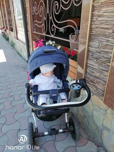 Prodaiu kaliasku ADAMEX 2V1 POLSHA. Pochti novyidojdevik,moskitnyi в Бишкек