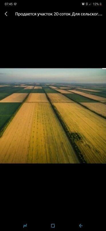 Недвижимость - Токмок: 100 соток, Для сельского хозяйства, Собственник, Договор дарения