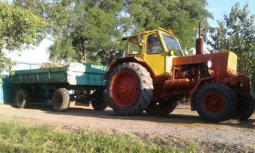 Трактор юмз 6 с прицепом