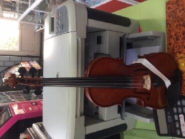 Скрипки - Кыргызстан: Продаю скрипку младших классов
