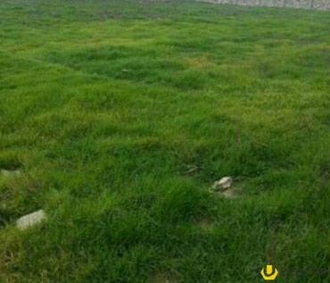 Liman şəhərində  6 Sot Torpaq Sahesi Satilir.1Sotu-650 Manat.Senedler