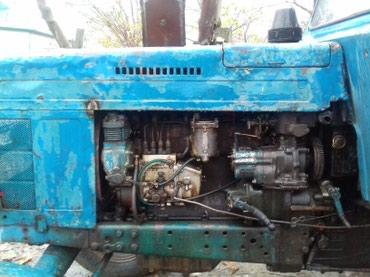 Bakı şəhərində Ismayilli rayonu kurdmaşi kende 80 da traxdur satilir hec bir