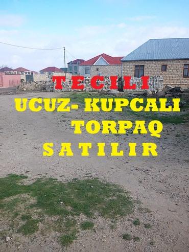 Bakı şəhərində TECILI UCUZ KUPCALI TORPAQ SATILIR