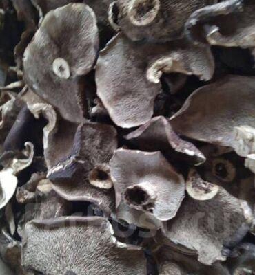 """Дом и сад - Кыргызстан: Продаём сушенные грибы: белый, лисички, ежовик пестрый """"Медвежье"""