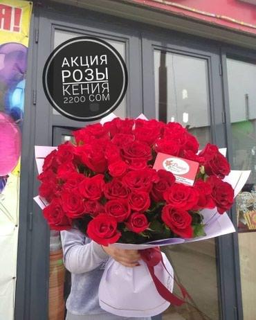 АКЦИЯ РОЗЫ КЕНИЯ по самым низким в Бишкек