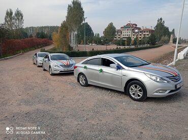 | Региональные перевозки, По городу Легковое авто | 4 мест