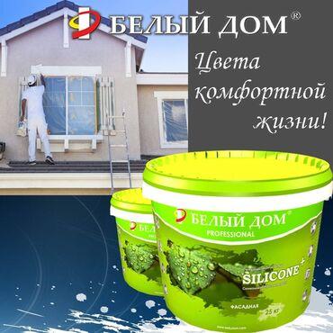 акриловые краски бишкек in Кыргызстан   КРАСКА: Краска   Гарантия
