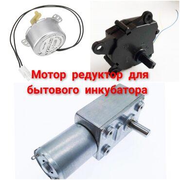 Мотор редуктор для инкубатора 12/220 вольт#терморегулятор #инкубатор