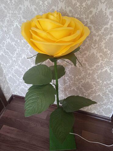 Срочно срочно продается цветок из изалона В наличии за 2200сома