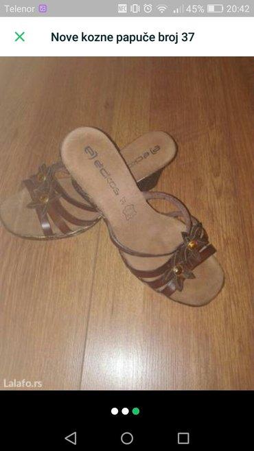 Kozne-papuce - Srbija: Nove kozne papuce