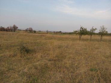 земельные участки семьям в Азербайджан: Продажа 189 соток