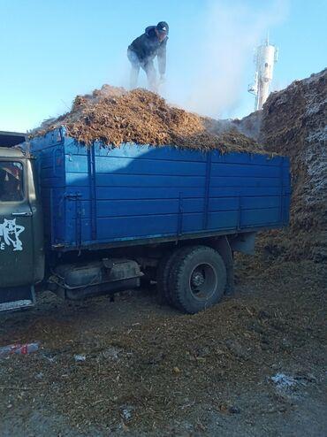вулканизация оборудование цена в Кыргызстан: Продаю силос оптом и розницу кукуруза внутри Село ленинское