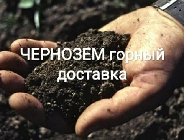 Чернозем горный плодородный без мусора сорняков Перегной многолетний