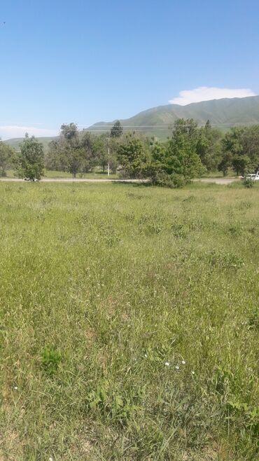 голые в Кыргызстан: Ср.прод.ферму с земельн. долей 5 га и с уч.1, 2 га из кр. кирп. на 100